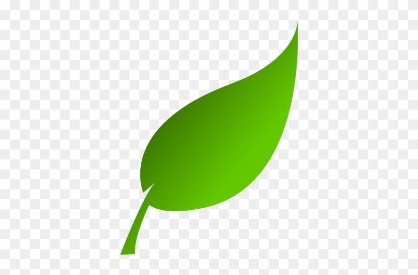 Leaf Clipart - Leaf Clip Art Png #4703