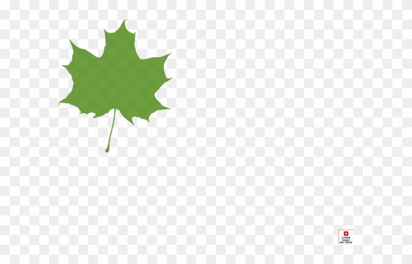 Green Maple Leaf Clip Art At Clker - Leaves Silhouette #4727