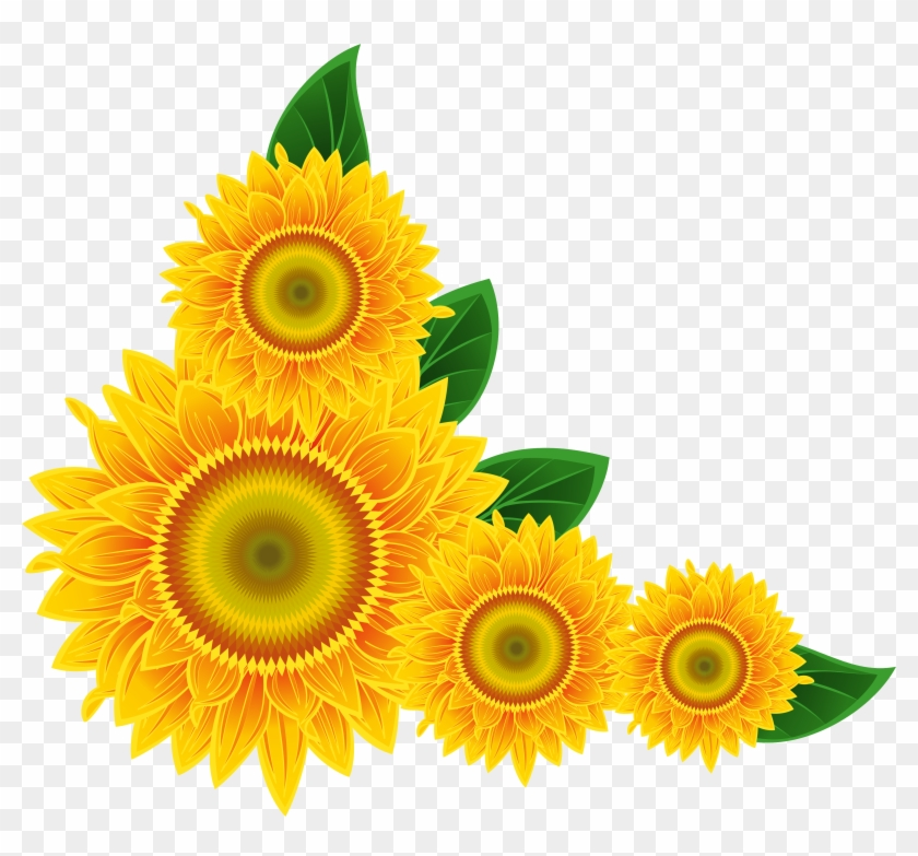 Sunflower Clip Art Images Xbox - Sunflower Corner Png #4794