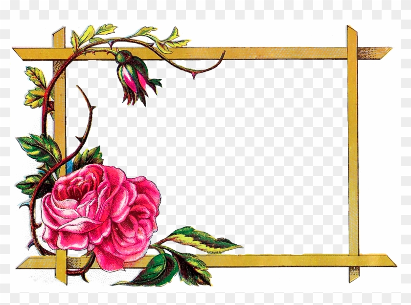 Digital Clipart Craft Rose Border Download Border Design With