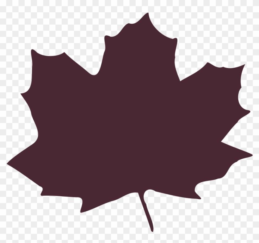 Birch - Leaf - Clipart - Leaf Purple Cartoon #5106