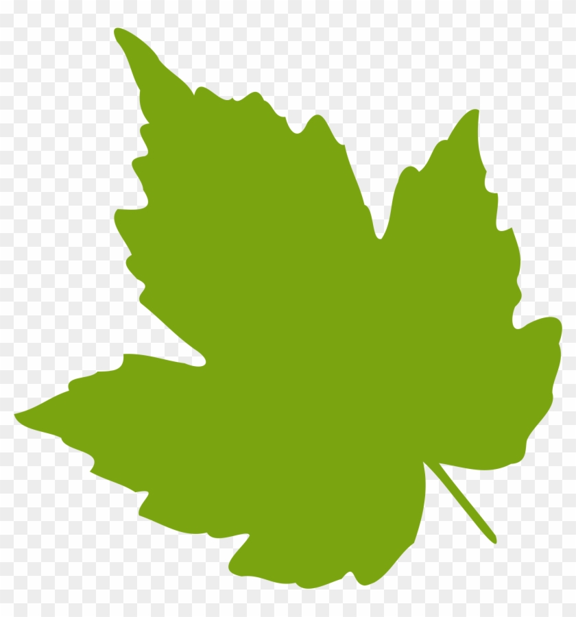 Leaf - Clipart - Grape Leaf Clip Art #5124