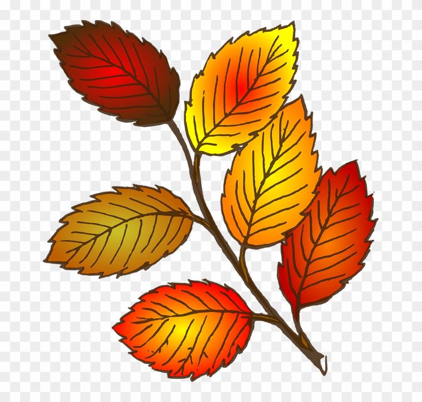Leaves Clip Art #5276
