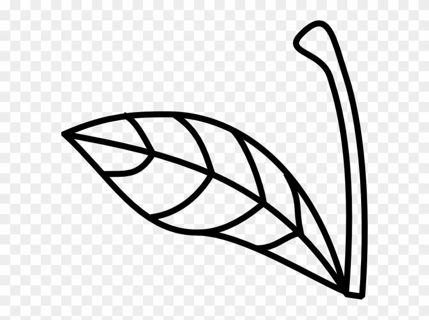 Apple Stem Leaf Clip Art - Stem Clip Art Black And White #5313