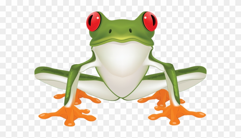 Jungle Frog Cliparts Free Download Clip Art Free Clip - Clip Art Tree Frog #5390