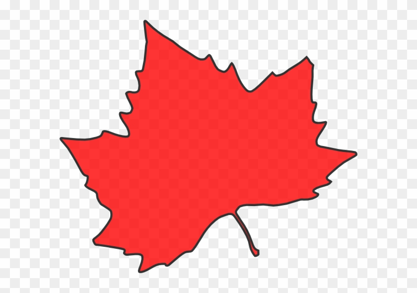 Maple Leaf Clipart - Autumn Leaves Clip Art #5433