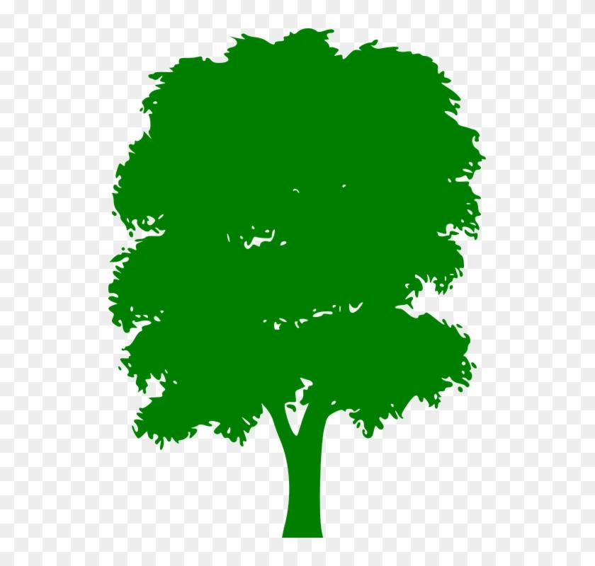 Tree Green Plain Nature Wood Outside Silhouette - Tree Green Plain Nature Wood Outside Silhouette #603