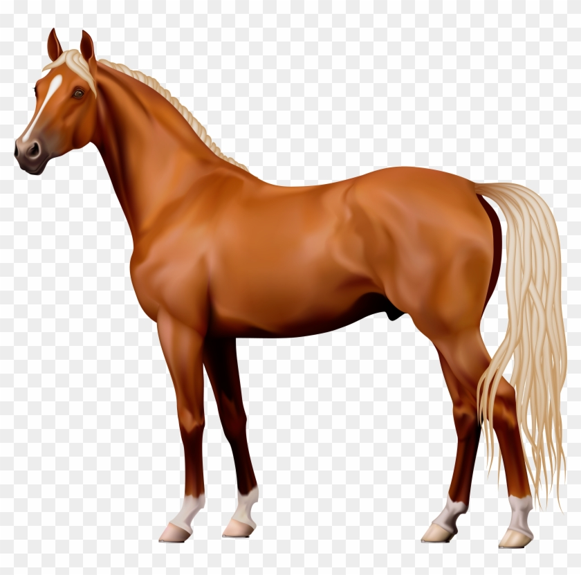 Brown Horse Png Clipart - Horse Png #5758
