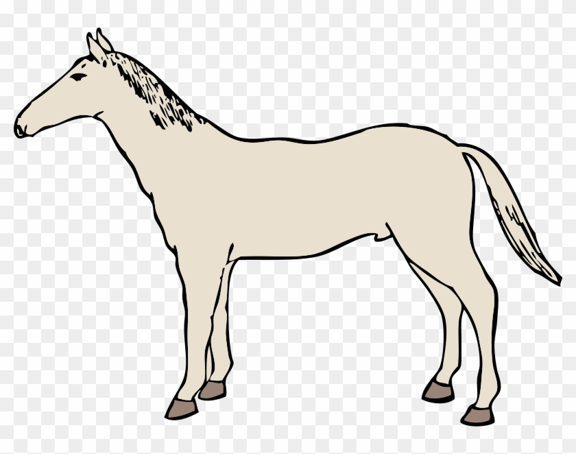 Clipart Info - White Horse Clipart Transparent #5842