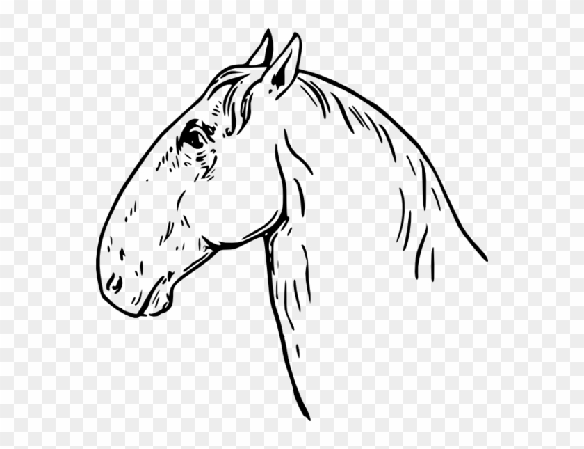 Horse Head Clip Art Free Clipart To Use Resource - Clipart Free Horse Black And Wite #5885
