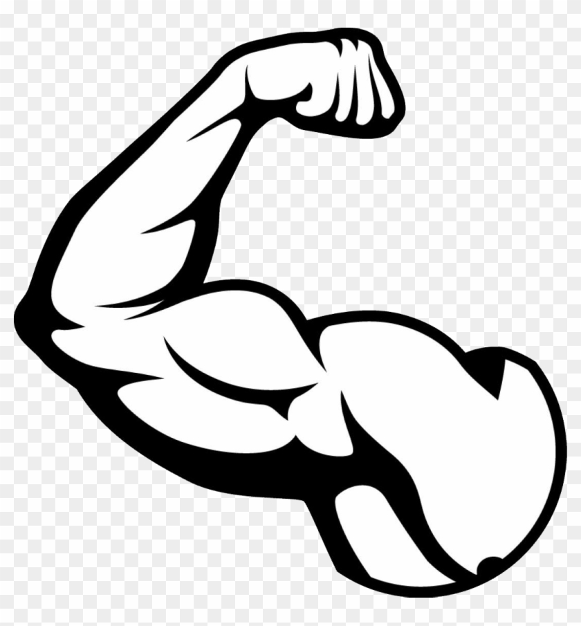 Clipart Pretty Inspiration Muscle Clipart Png Images - Muscle Clipart Transparent #5912