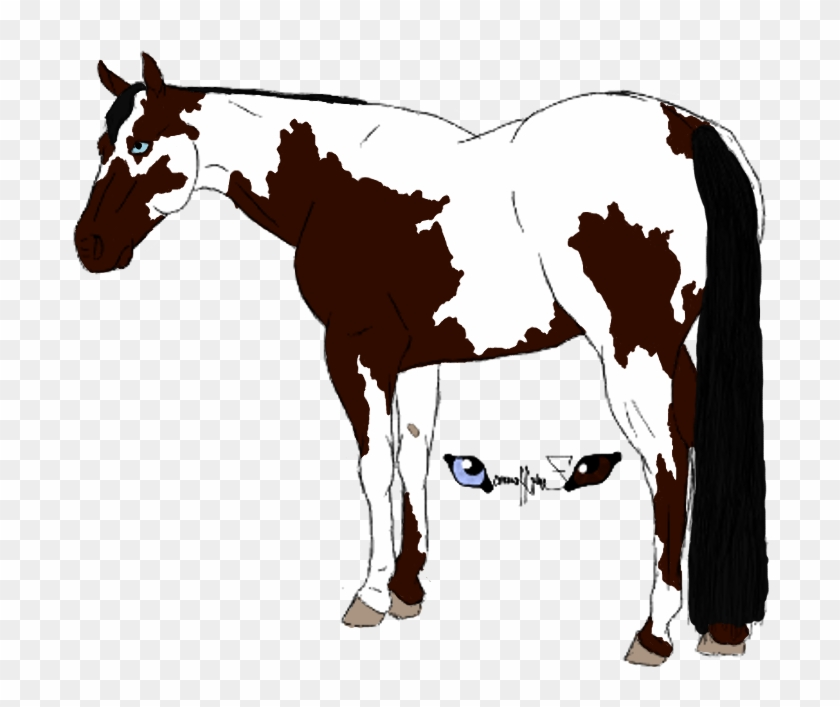 American Paint Horse Foal Drawing Clip Art - American Paint Horse Foal Drawing Clip Art #5982