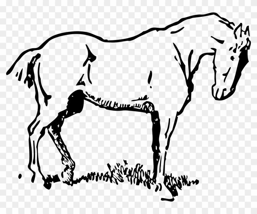 Get Notified Of Exclusive Freebies - Horse Clipart #6049
