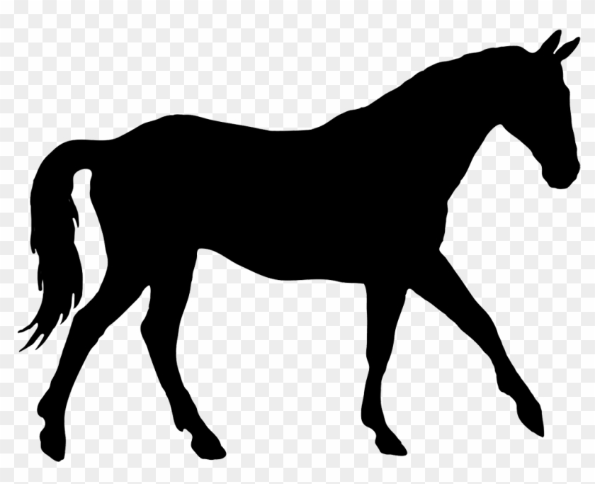Horse Silhouette Clip Art Many Interesting Cliparts - Silhouette Of A Horse #6106