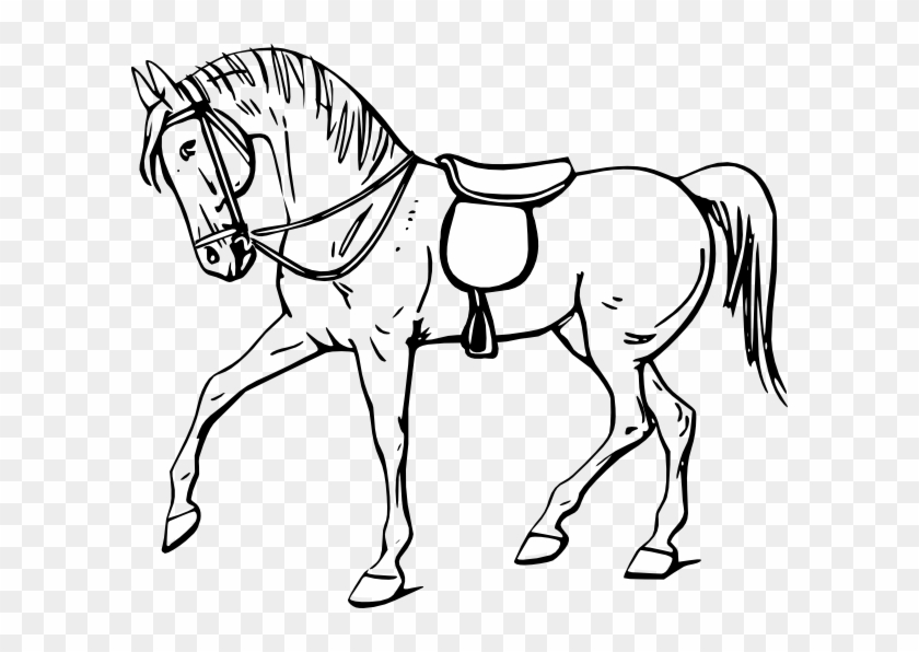 Walking Horse Outline Clip Art - Outline Picture Of Horse #6124