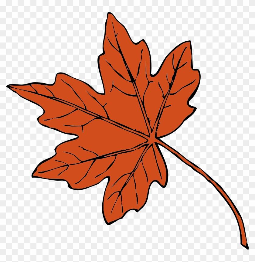 Thanksgiving Clip Art Free Christian - Fall Leaves Clip Art #6488