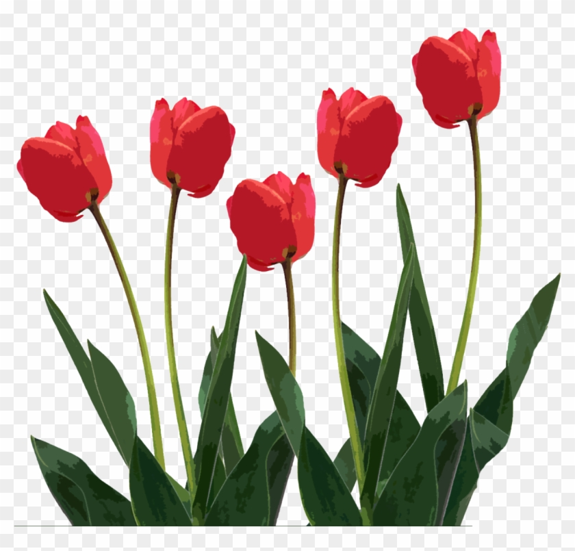 Download - Mothers Day Clipart Png #6584