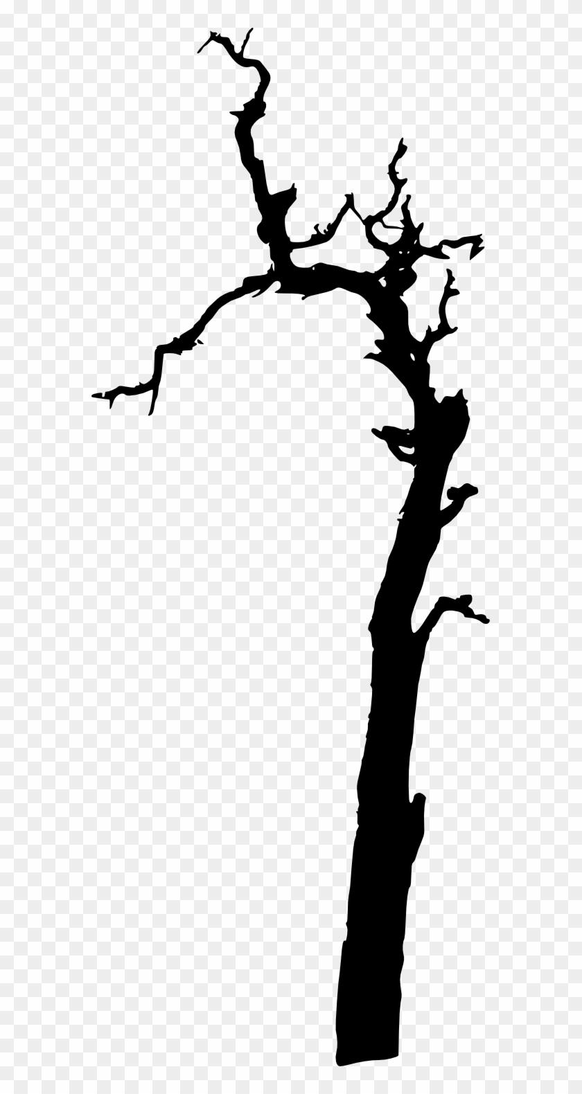 17 Dead Tree Silhouette - 17 Dead Tree Silhouette #67