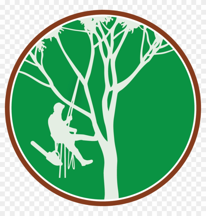Paul The Tree Climber - Tree Climber Logo #745
