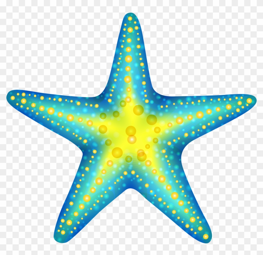 Blue Starfish Png Clip Art - Starfish Clipart Png #6959