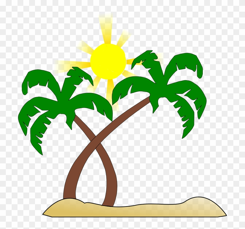 Beach Palm Tree Sun Green Brown Yellow Heat - Beach Palm Tree Sun Green Brown Yellow Heat #717
