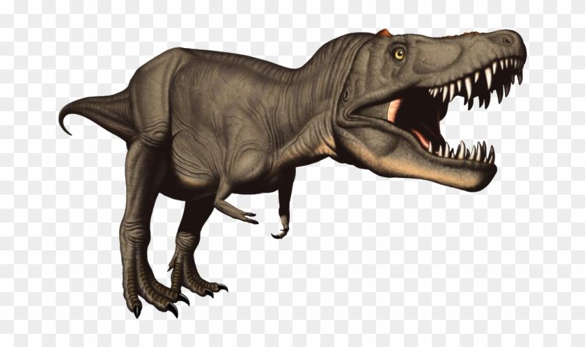 Rex Dinosaur Clip Art - Dinosaure Clipart T Rex #7035