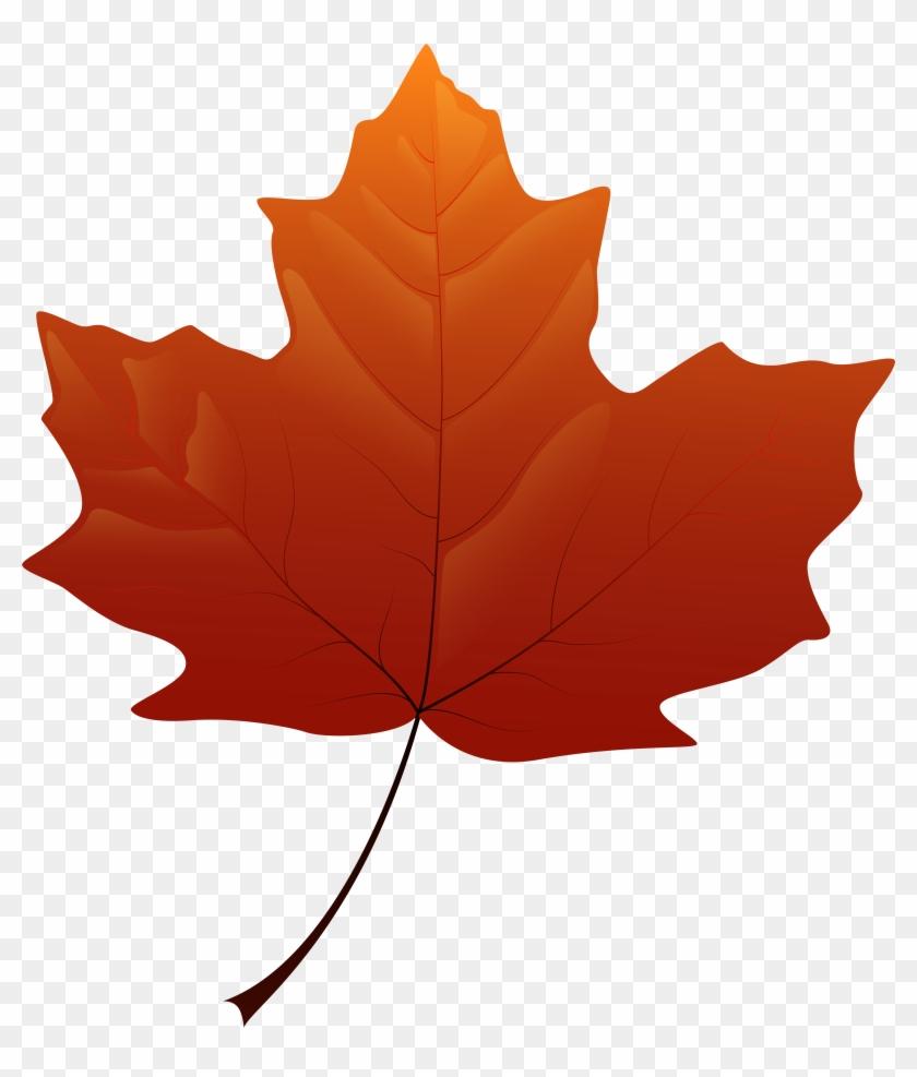 Autumn Leaf Png Clip Art - Autumn Leaf Png Clip Art #775