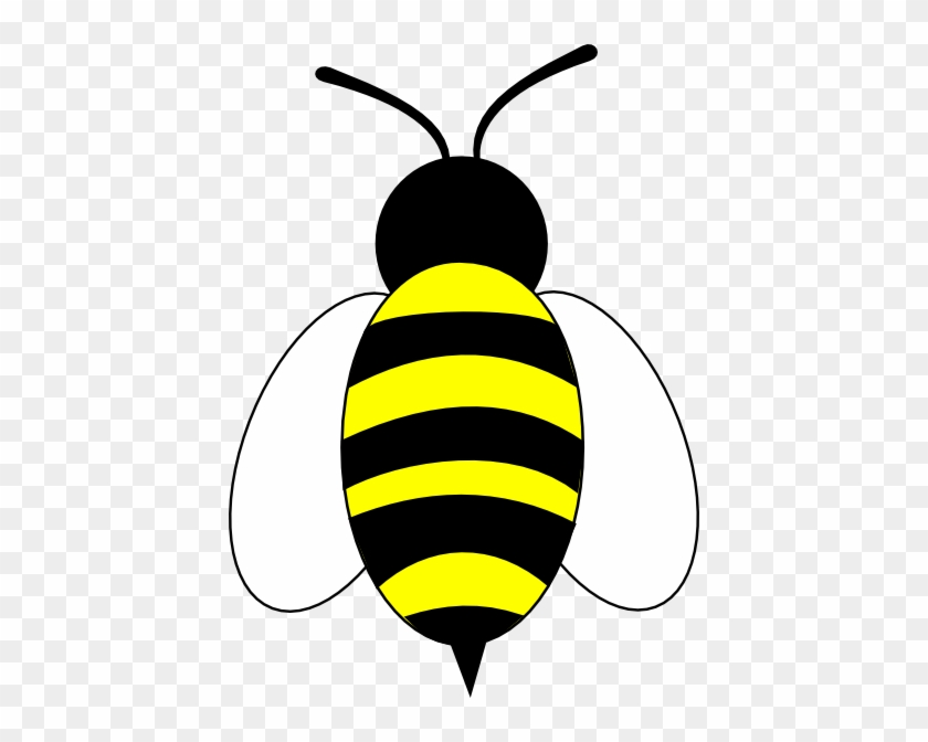 Large Bee Slanted Wings Clip Art - Simple Bee Cartoon #7374