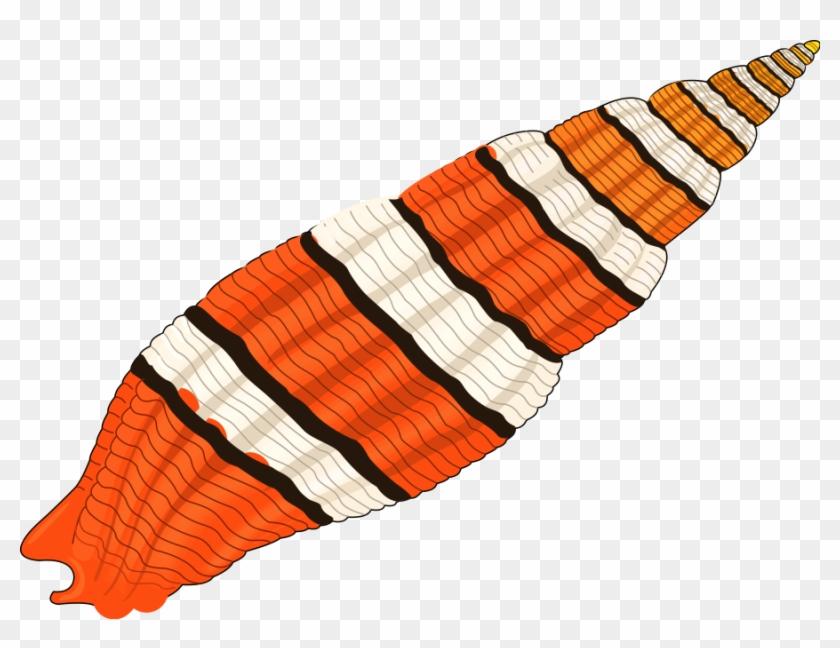 Seashell 01 Medium 600pixel Clipart, Vector Clip Art - Clip Art Seashell #7741