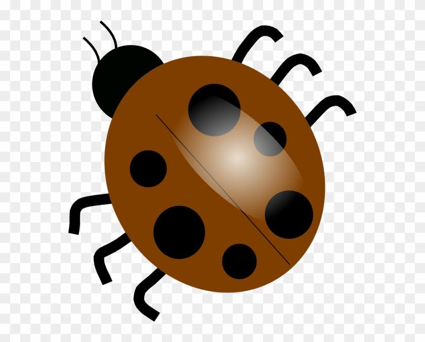 Brown Ladybugs Clip Art At Clker - Transparent Background Clip Art Bug #7779