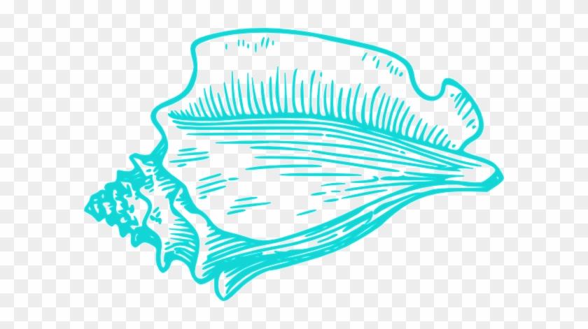 Teal Light Conch Shell Clip Art - Teal Seashell Clipart #7846