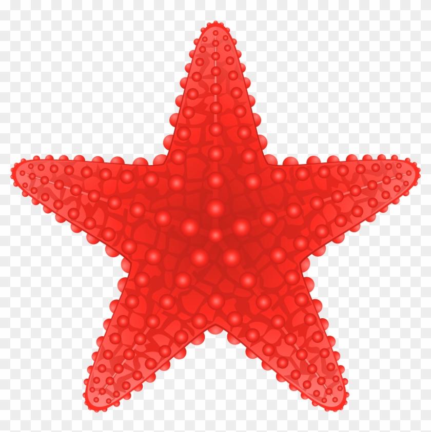 Starfish Transparent Clip Art Image - Starfish Clip Art Png #7942