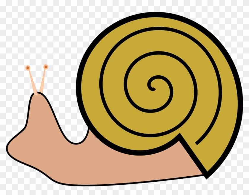 Snails Clipart #7980