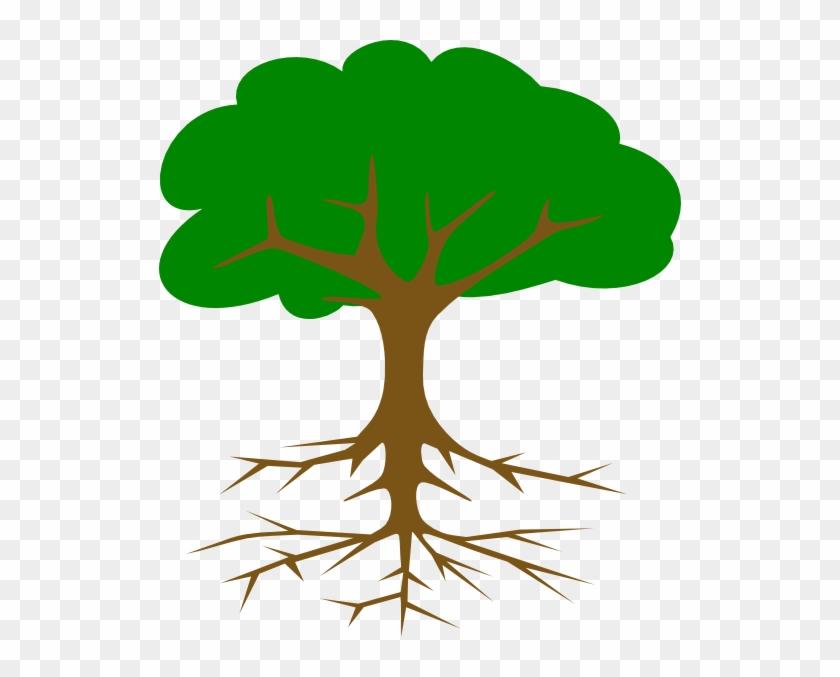 Treeroot22 Clip Art At Clker - Tree Clip Art #816