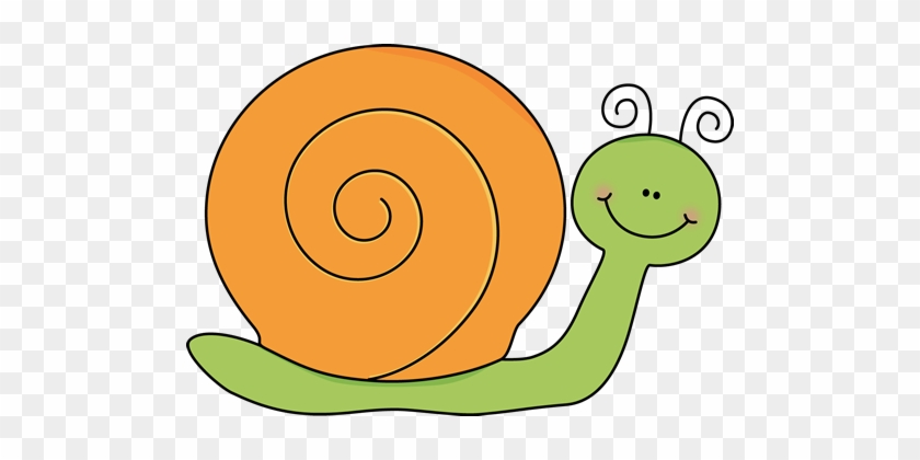 Green And Orange Snail - Snail Clipart #8015