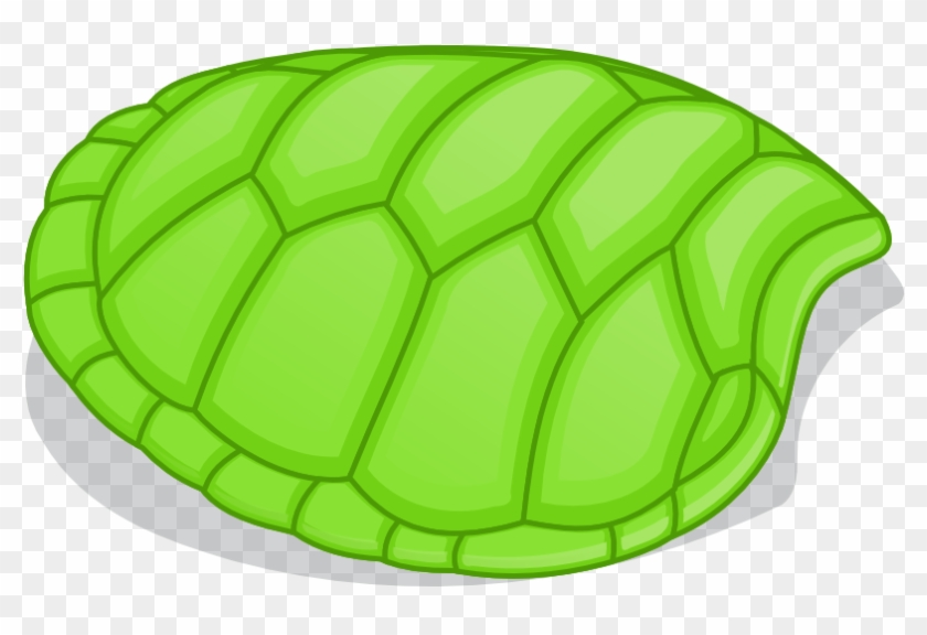 Turtle Shell Clipart #8127