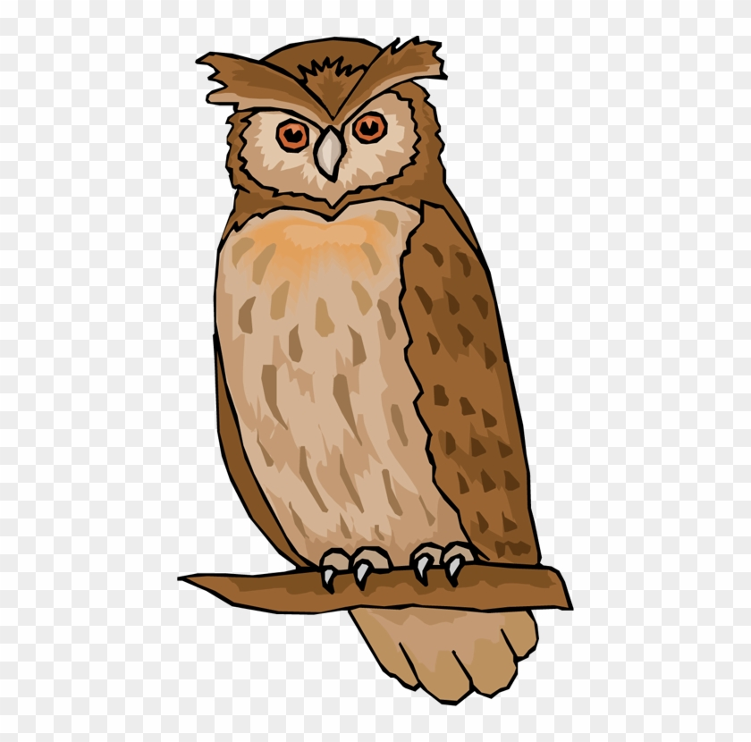 Clipart Of Owl Free Owl Clipart Animations - Owl Images Clip Art #8182