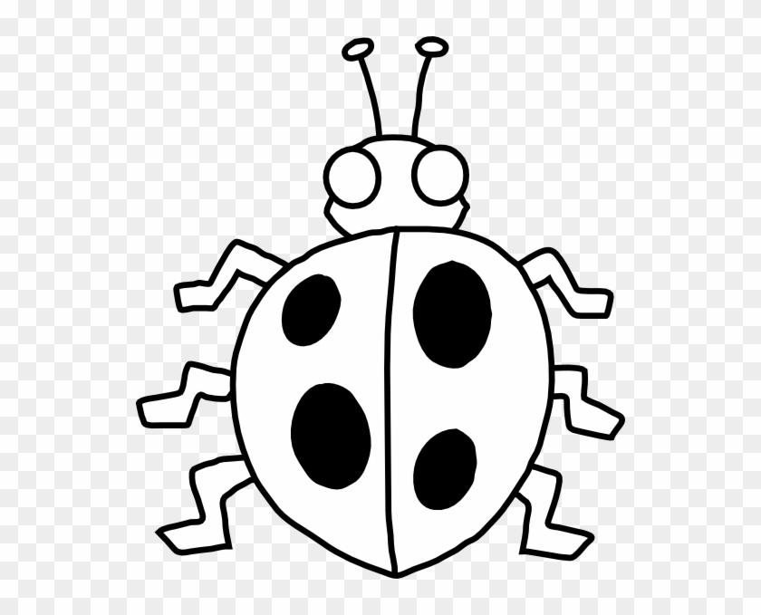 Ladybug Outline Photos Of Ladybug Spots Clip Art Cute - Beetle Black And White #8276