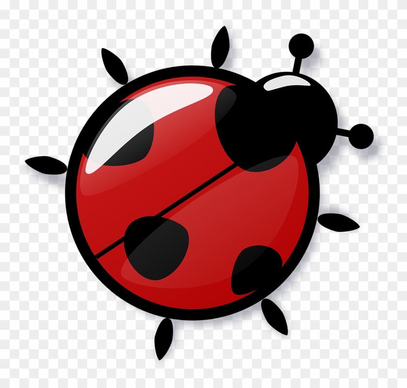 Ladybug Free To Use Clipart - Ladybug Joaninha #8348