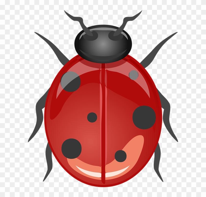 "Ladybug Clip Art Free Vector 4vector - Ladybugdesign 60"" Curtains #8350"