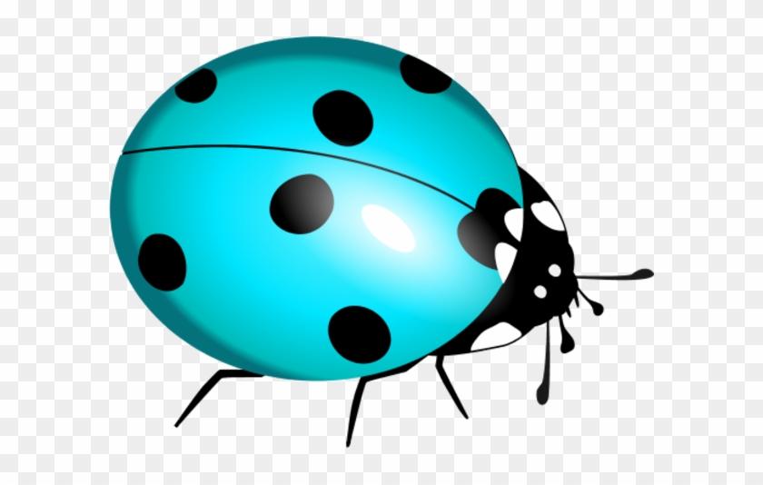 Ladybug Clipart Teal - Lady Bug Clip Art #8351