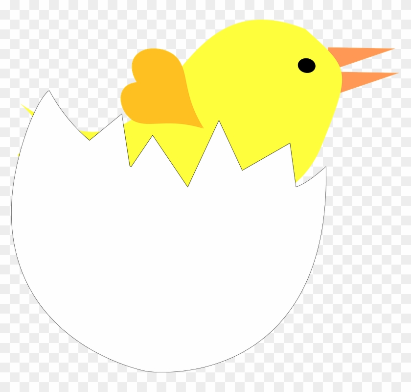 Cracked Egg Shell Clipart - Pintinho Na Casca De Ovo #8376