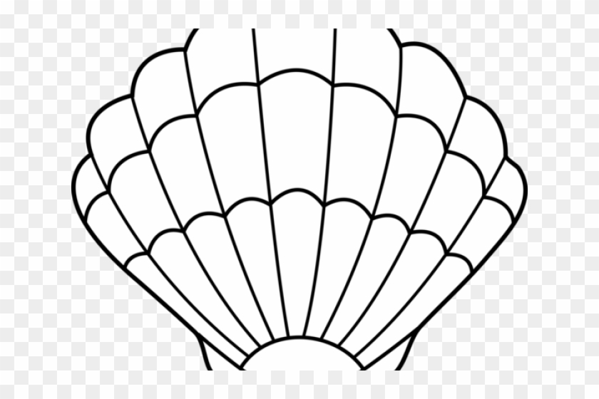 Shell Clip Art - Sea Shell Coloring Pages #8420