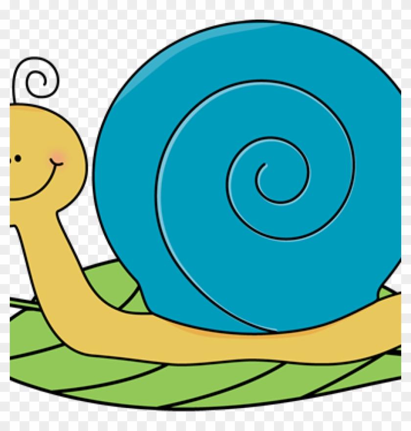 Snail Clipart Clip Art Cartoon Snail Clipart Kid 4 - Clip Art #8429