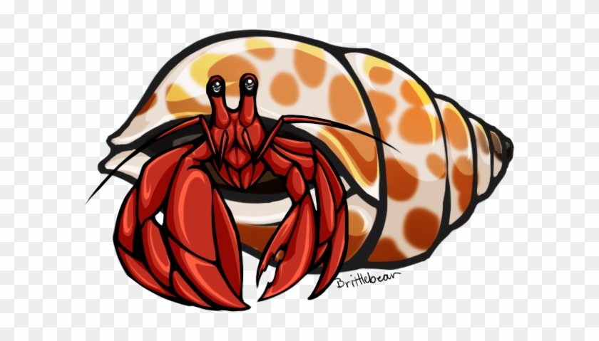 Shell Clipart Hermit - Hermit Crab Clipart Transparent #8449