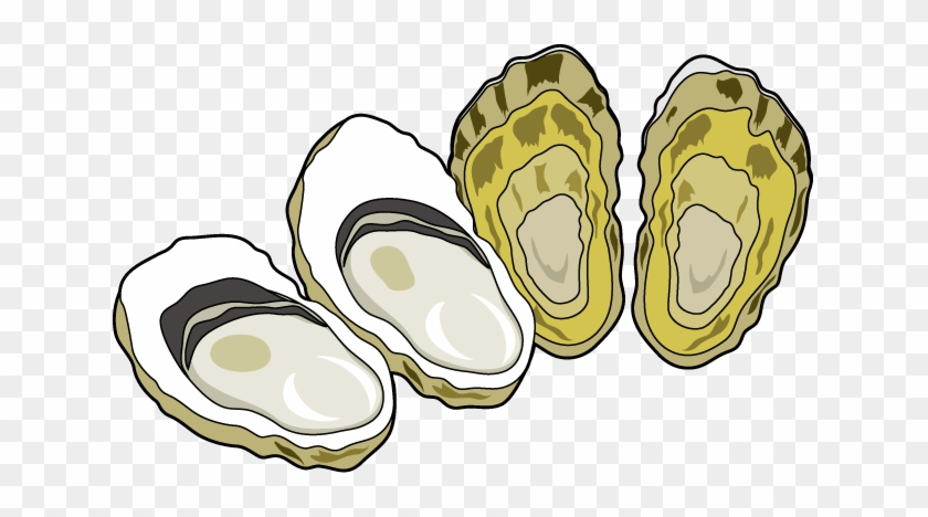 Oyster Clip Art - Oyster Clipart #8592