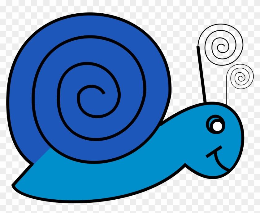 Mollusc Clipart Snail Shell - Slow Clip Art #8655