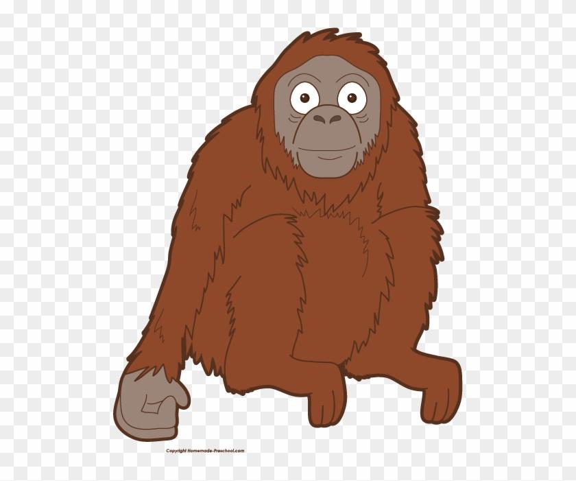 Click To Save Image - Orangutan Clipart Png #8674