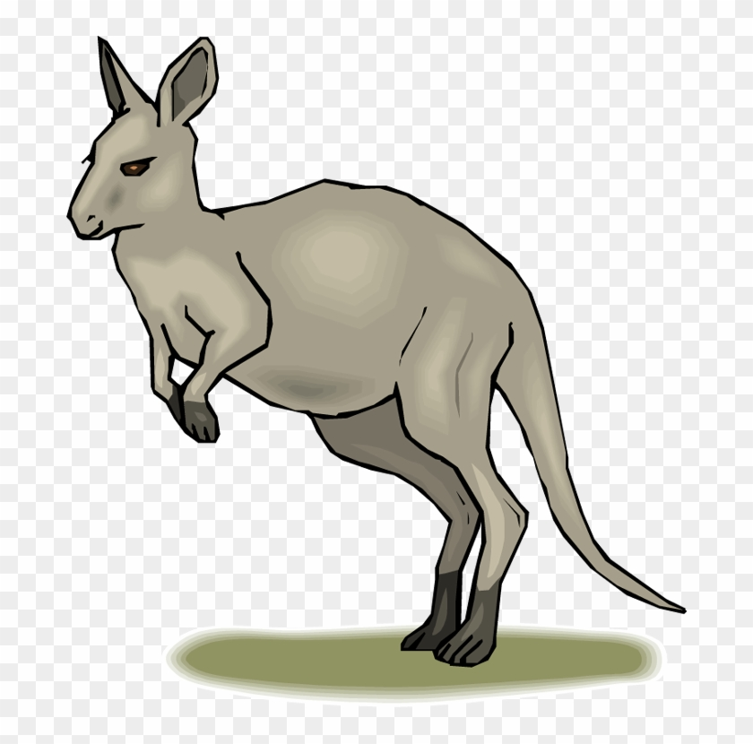 Habitat Map Clipart Kangaroo Clip Art Library - Kangaroo Animated #9292
