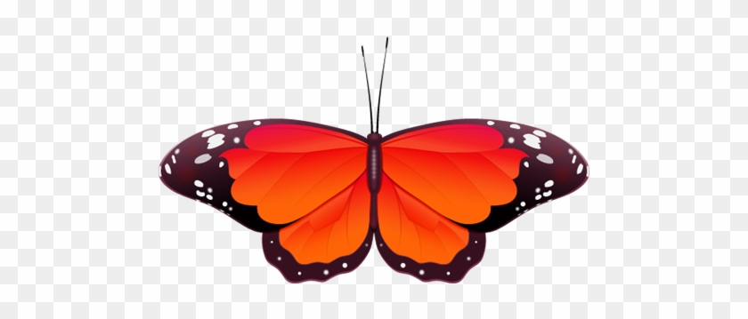 Red Butterfly Clip Art - Red Butterfly #9663